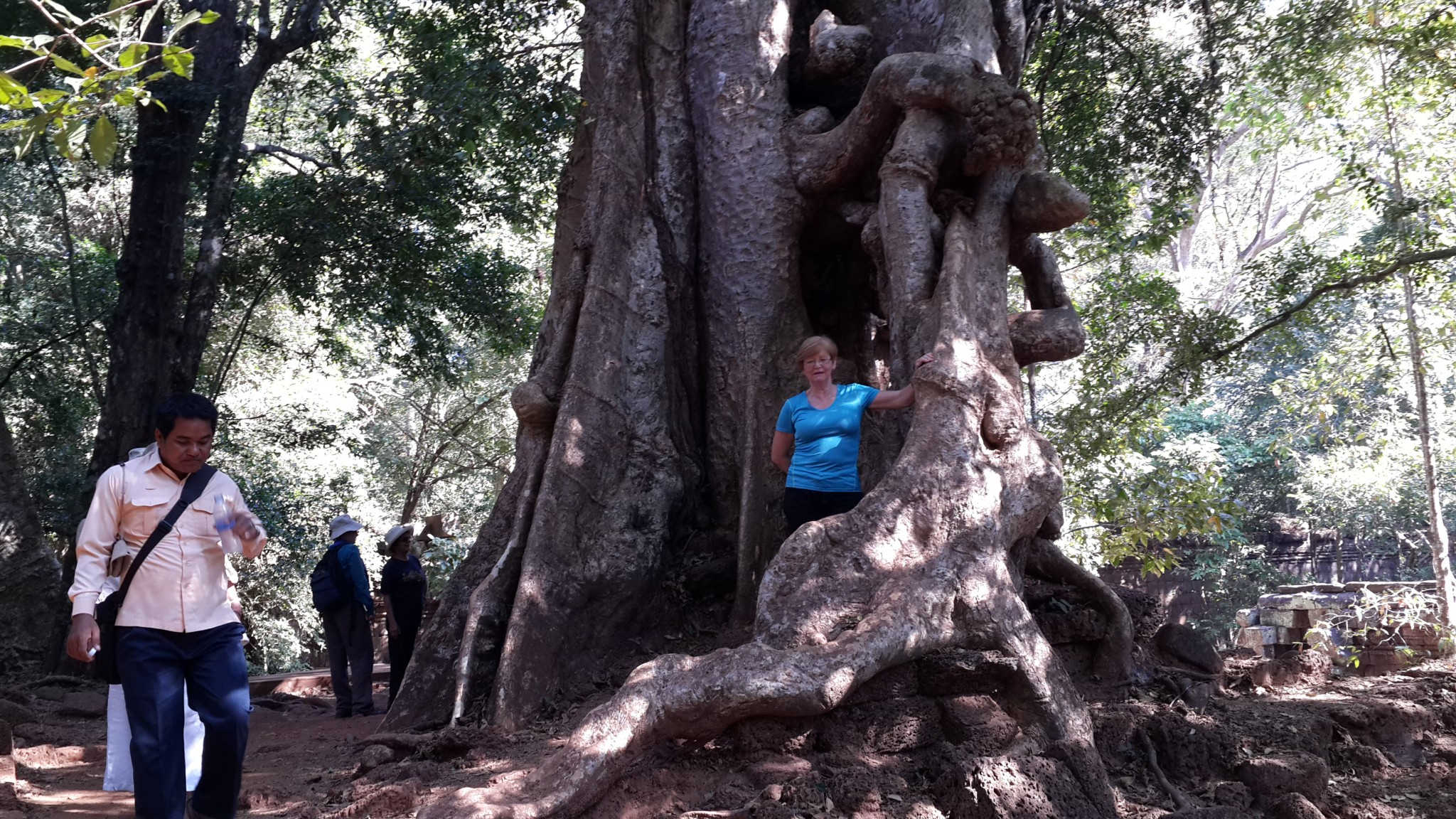 Mum standing in the sprawling roots of a massive tree. Trees like these were responsible for demolishing large sections of the buildings within the site when it was abandoned due to water influx.